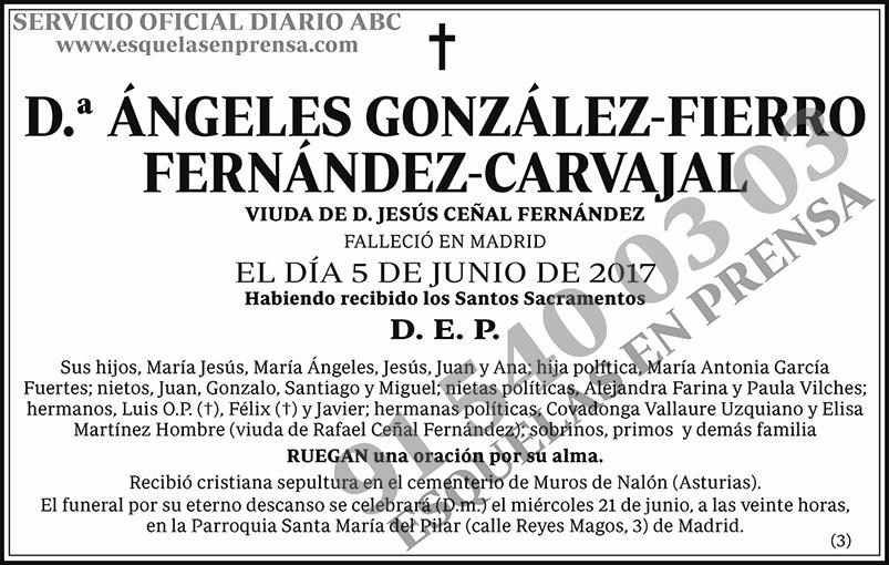 Ángeles González-Fierro Fernández-Carvajal